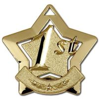 Mini 1st Place Star Medal</br>AM711